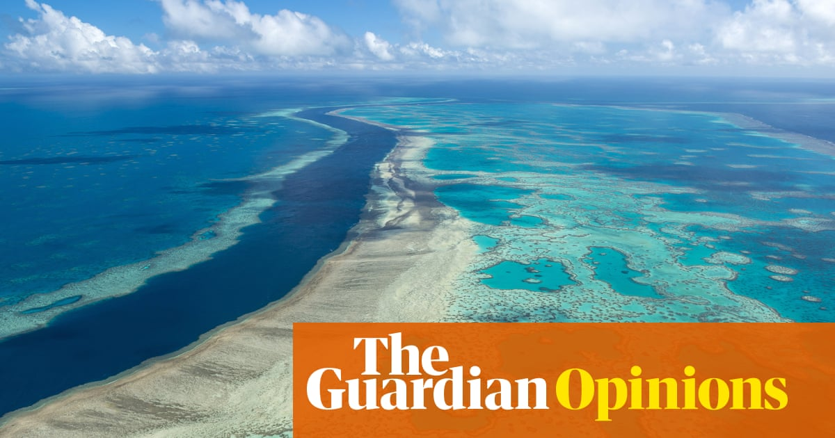 The Great Barrier Reef is a victim of climate change – but it could be part of the solution