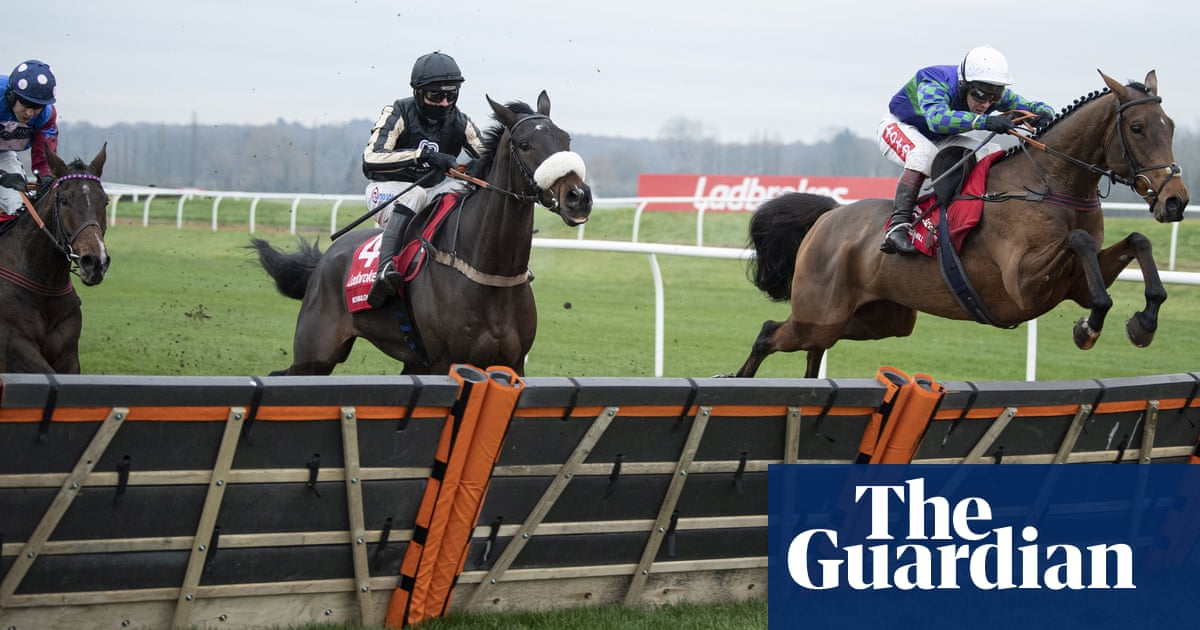 Thyme Hill speeds home at Newbury to stake claim for staying hurdlers crown