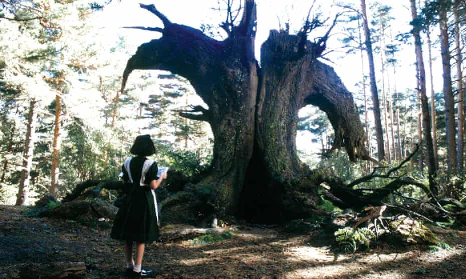 A scene from Guillermo del Toro's 2006 film Pan's Labyrinth