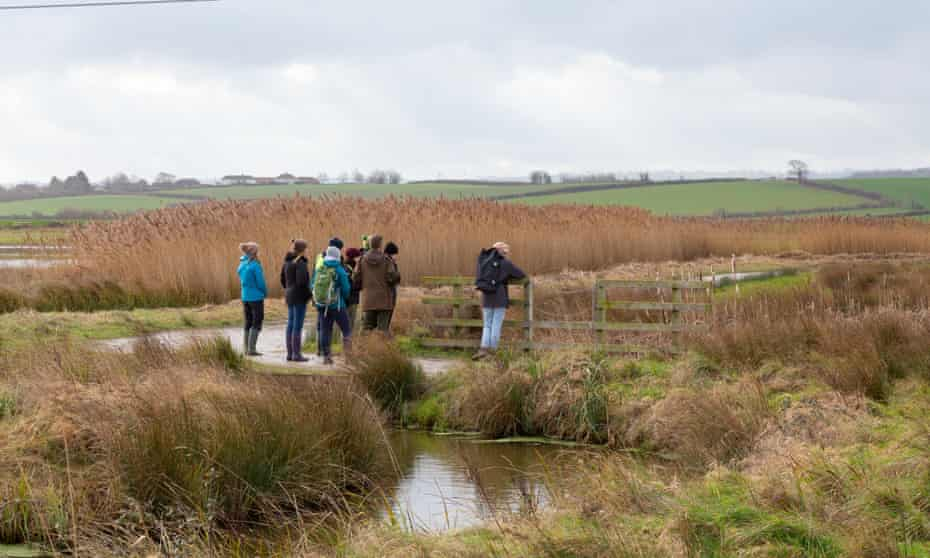 A group of visitors with a volunteer at Steart Marshes. Steart Working Wetlands, CIEEM.