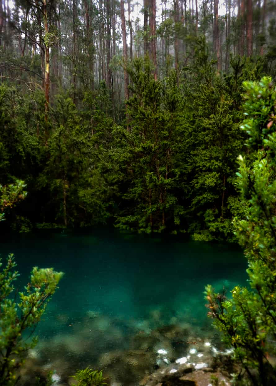 The crystal clear waters of the The Disappearing Tarn located at kunanyi/ Mount Wellington, Tasmania, Australia.