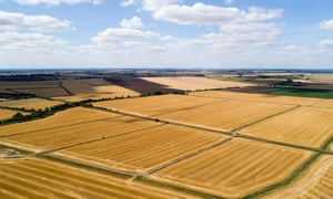 Parched fields near Ely, Cambs