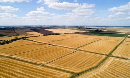 Drought-ridden fields of crops