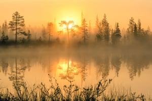 Sunrise, Syöte national park, Northern Ostrobothnia, Finland