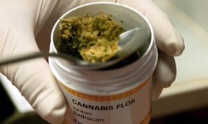 Cannabis in a pharmaceutical container in the Netherlands