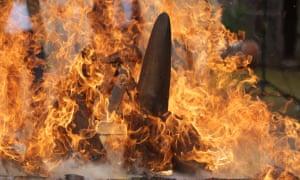 Rhino horn burns at Dvůr Králové Zoo in the Czech Republic on September 19, 2017.