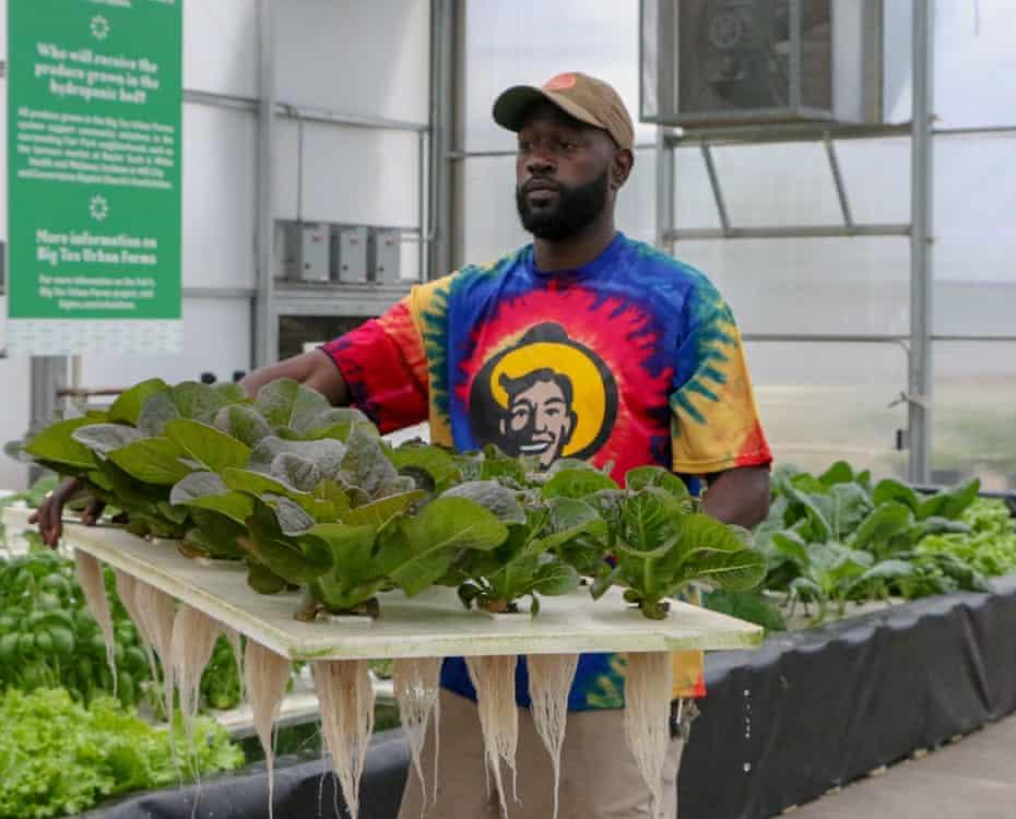 Food grown for the Big Tex urban farms at Texas state fair