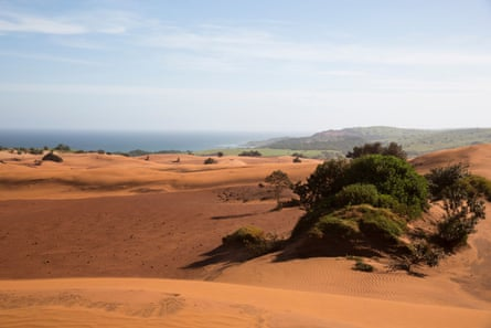 Pondoland's sand dunes stretch along the Indian Ocean coast and up to two kilometres inland.