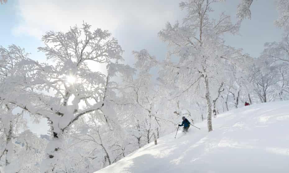 Skiing through powder at Rusutsu, Japan.