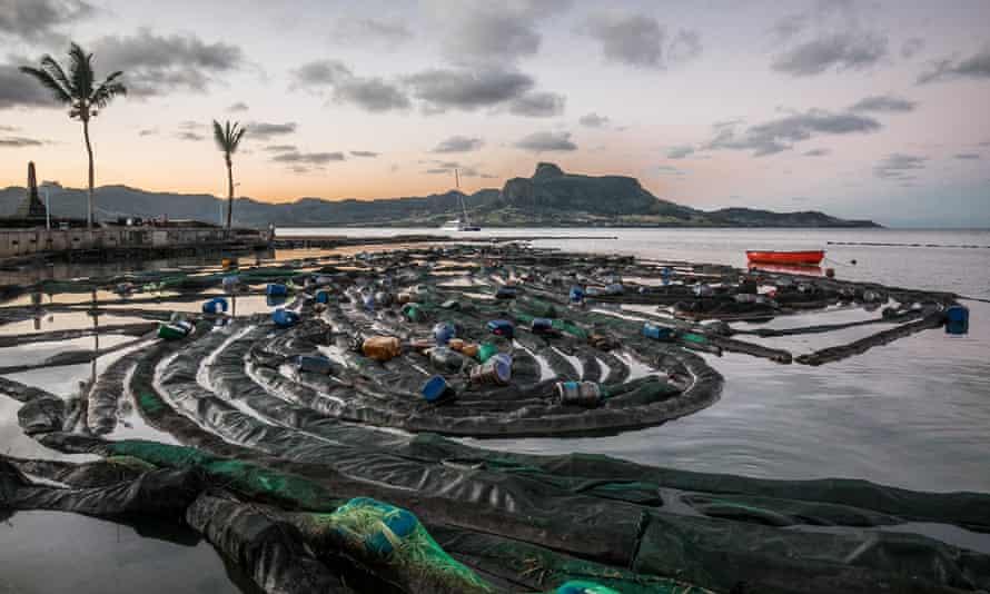 Mauritius'un güneydoğu kıyılarında petrol yıkamasını önlemek için topluluk yapımı yüzer saman ve kumaş bariyerleri.