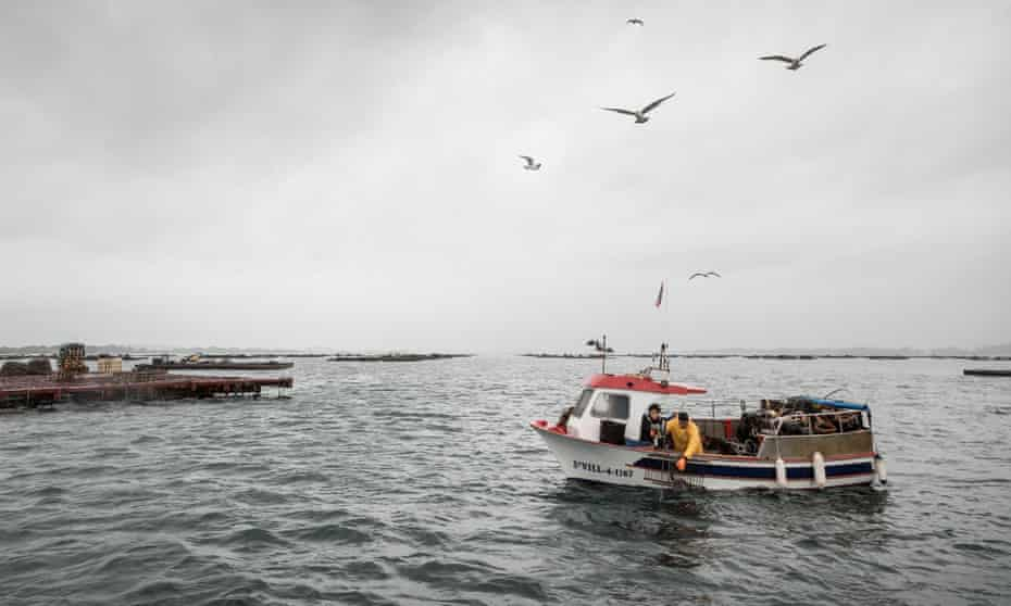 In search of seafood … chef Nieves Barragán Mohacho and fisherman Felix Piñeiro venture out to sea.