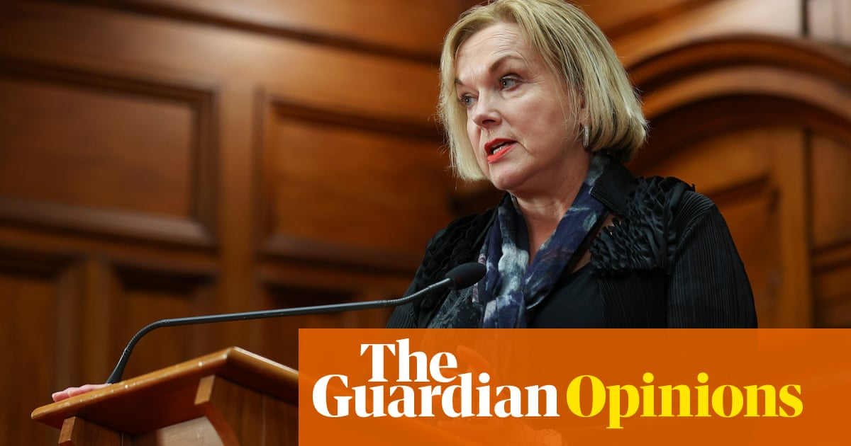 Judith Collins' comments on Māori health policy are a diversion