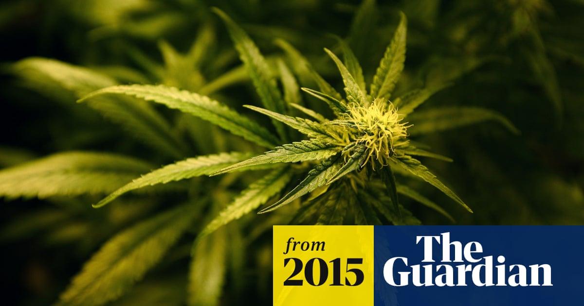 Victoria close to legalising medicinal marijuana with