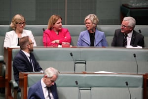 The crossbench during a division in question time in the House of Representatives