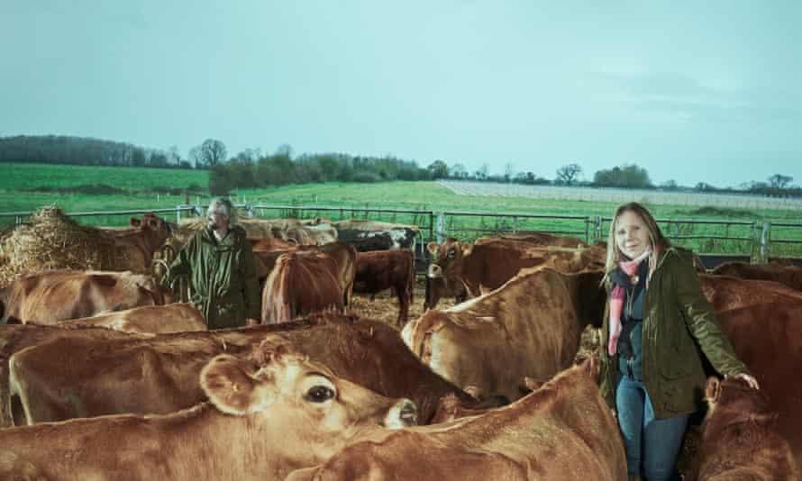 The Mayhew's dairy farm.
