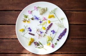 Low-cost cooking: Felisa Rogers talked about foraging, gardening, and shopping on a budget.