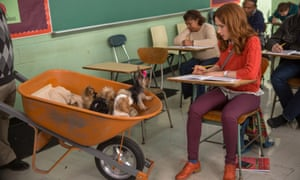 Unbreakable Kimmy Schmidt, one of the current crop of sitcoms canning the canned laughter.