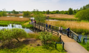 London Wetland Centre comprises 105 protected acres, teeming with wildlife.