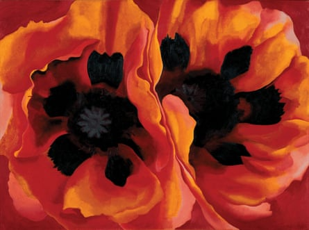 Sexualised flowers … Georgia O'Keeffe.