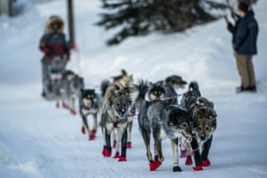 Richie Diehl arrives in Ruby, Alaska, Friday morning, March 13, 2020, during the Iditarod Trail Sled Dog Race.