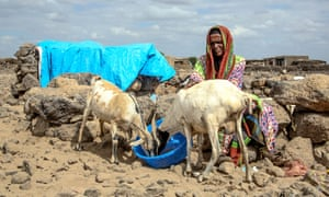 Buho Asowe Eye with some of her animals in Ethiopia's Siti region. The humanitarian situation in the country is 'serious and deteriorating', says Oxfam.