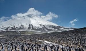 Zavodovski Island, with its colony of chinstrap penguins