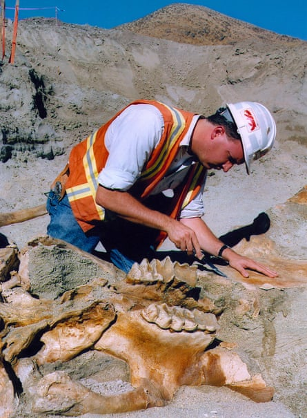DVL Eric Scott over the mastodon fossil that eventually came to be known as 'Max'.