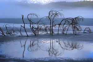 Branches of a fallen tree are reflected in the part-frozen water of Eibsee lake in Bavaria, Germany