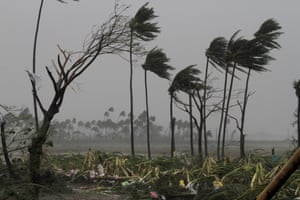 Uprooted trees and high winds in Puri