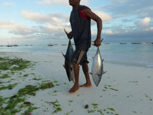 A fisherman returns to shore at dawn with just two tuna to show for his night's work