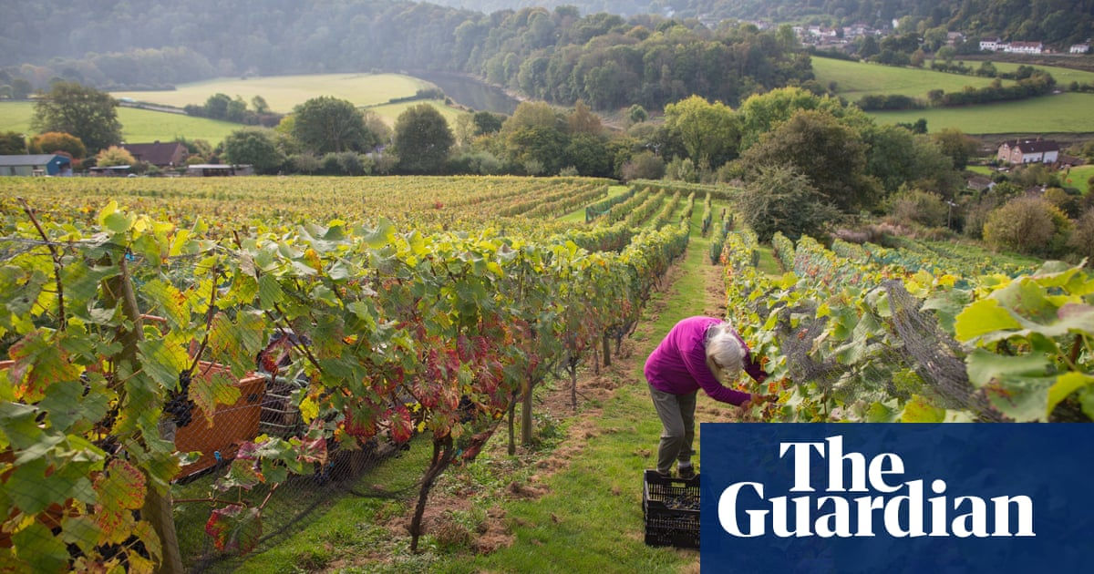 It's September – time to go back to (wine) school