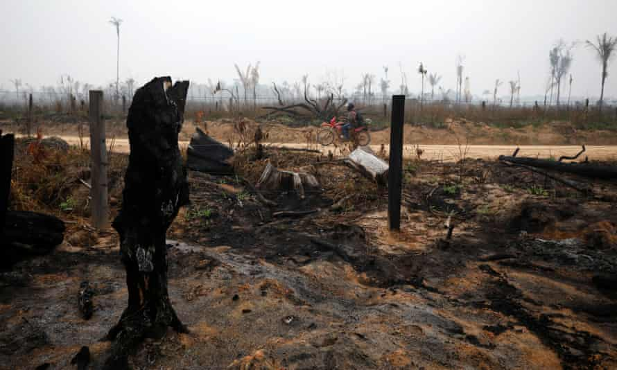 Burned-out jungle in Boca do Acre