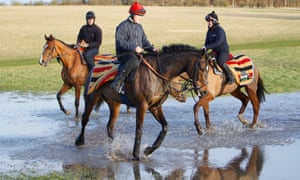 Altior has a splash in the water after early morning gallops at Nicky Henderson's Seven Barrows stables on Monday.