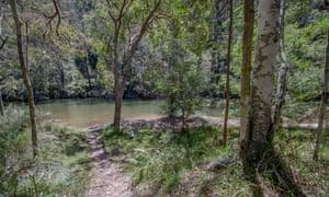 Marramarra creek in the Marramarra national park.