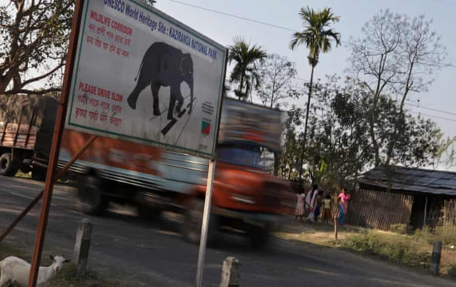'Wildlife corridor – please drive slow': a warning for drivers in Kaziranga national park, Assam.