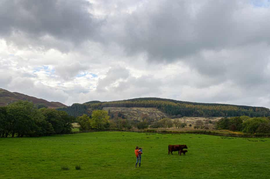 Many hill farmers rely heavily on EU subsidies for their survival.