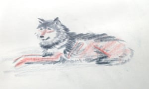Wolves 6