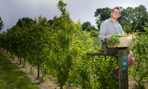 Guy Watson of Riverford sitting on a fence holding a box of organic veg, his growing crops behind him