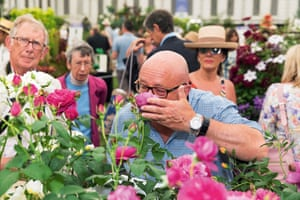 Scratch and sniff: the RHS Chelsea Flower Show.