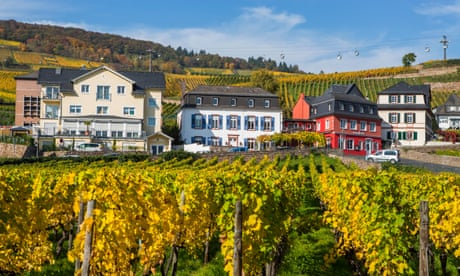 German white wines for summer | David Williams