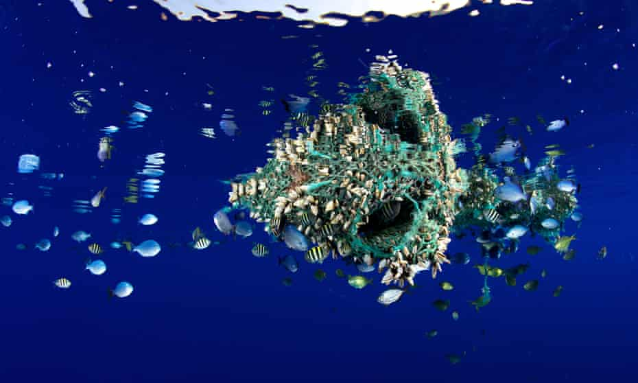 """""""Ghost netting"""" and other discarded fishing gear makes up 10% of all marine litter"""