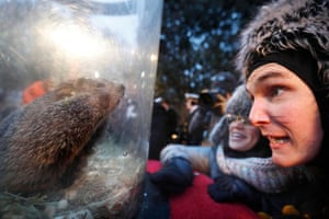 Visitors to Gobbler's Knob greet Punxsutawney Phil after he made his prediction during the Groundhog Day celebration