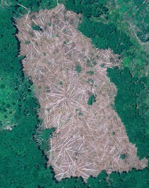 Photographie aérienne d'une région de l'Amazonie brésilienne où des arbres ont été abattus, puis brûlés