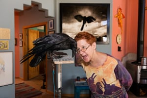 Peggy with Poe, a raven Wildlife Rescue Inc, Placitas, New Mexico, 2013Peggy is a volunteer for Wildlife Rescue and cares for injured birds in her home while they recuperate. If they're unable to be released back into the wild, she and other volunteers act as their guardians. Some are taken to public events from time to time to act as 'ambassador' animals and educate the public