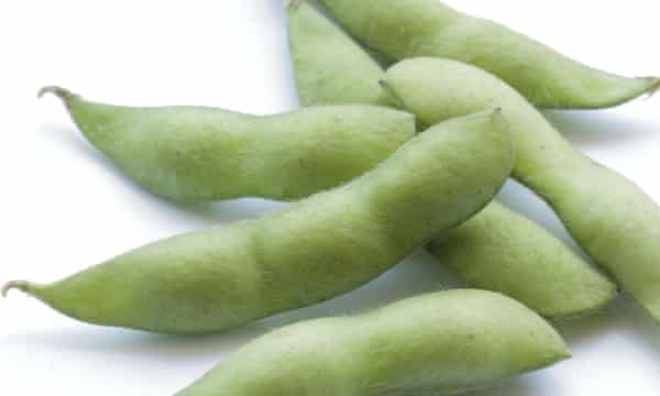Japanese green soybean isolated on white background