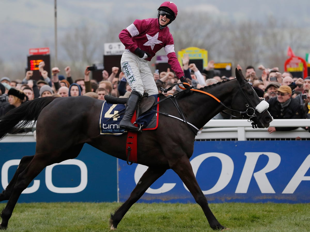 Cheltenham Gold Cup Winner Don Cossack Retired After New Injury Setback Horse Racing The Guardian