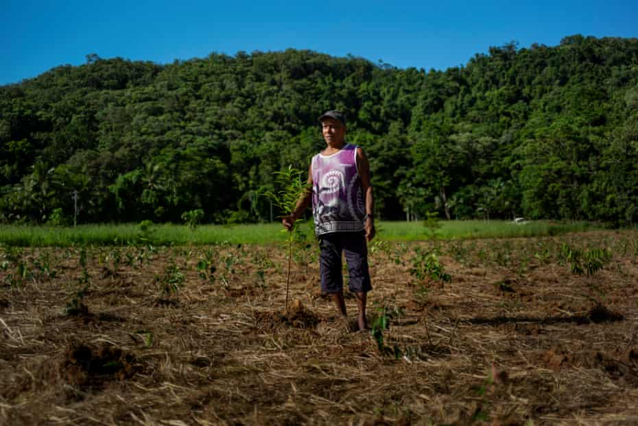 Bennett Walker, traditional and former owner of Yajanji, stands on what was once a sugarcane field in Daintree, in far north Queensland.  The farm, now owned by Annie Schoenberger, is replanted with native rainforest vegetation.
