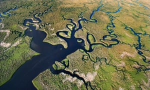The Everglades national park seen from the air.