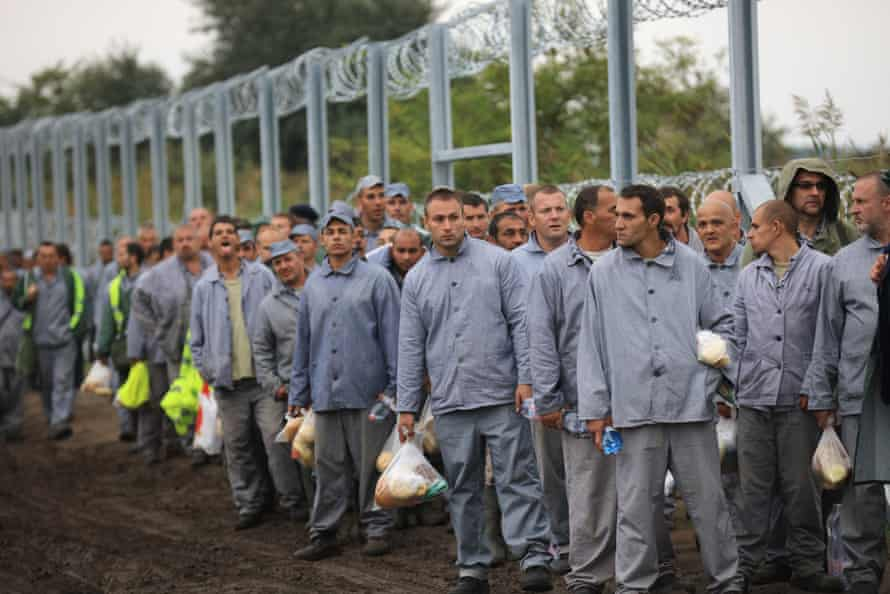 Hungarian prisoners form part of a work detail to finish the razor wire border fence with Serbia.