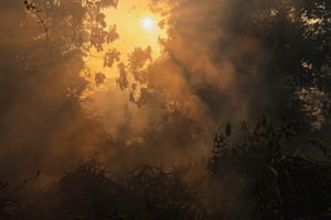 An Indonesian forest fire in Kampar, Riau province